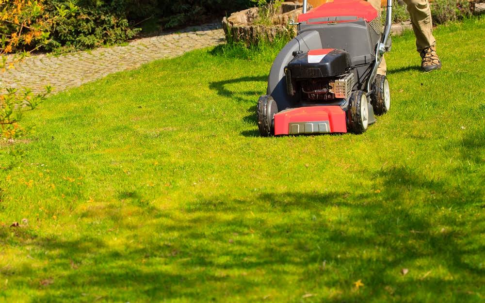 6 Easy Tips For A Beautiful Lawn