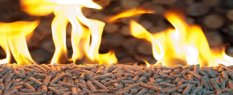 Restrictions for Biomass-Fuelled Appliances