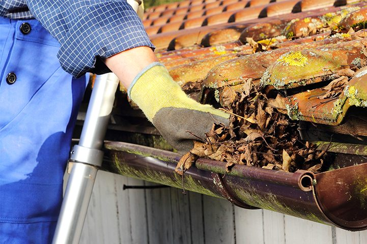 A Helpful Guide to Gutter Maintenance